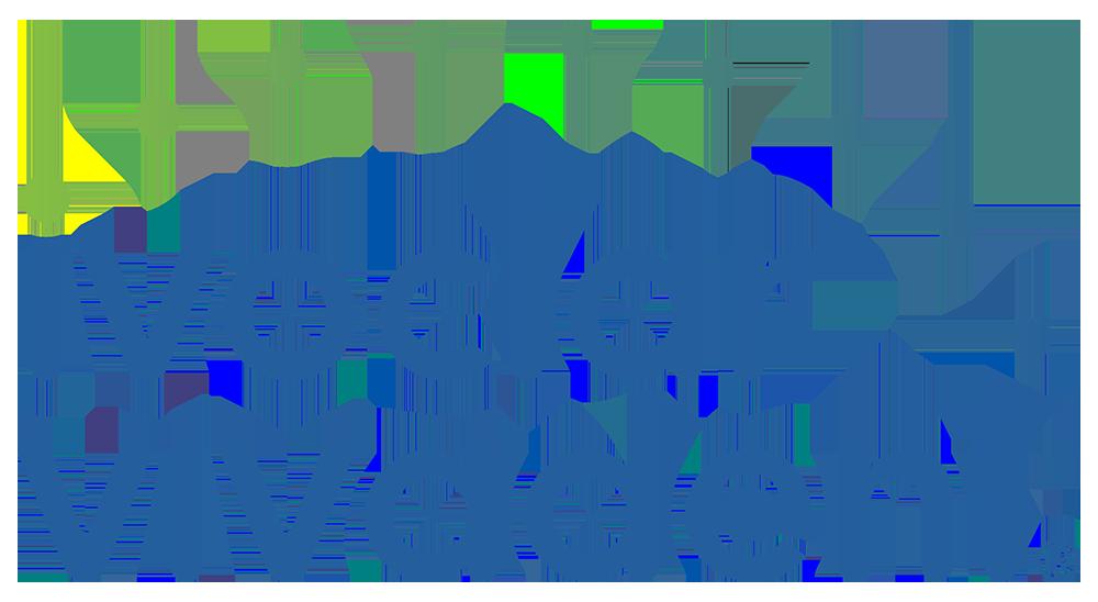 logo Iviclar Vivadent