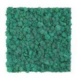 Cadre végétal Khloé en lichen 40 X 40 cm - Le cadre