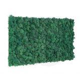 Cadre végétal Khloé en lichen 35 X 65 cm - Le cadre